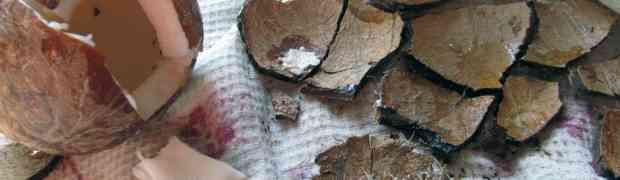 Как эффективно разбить кокос?